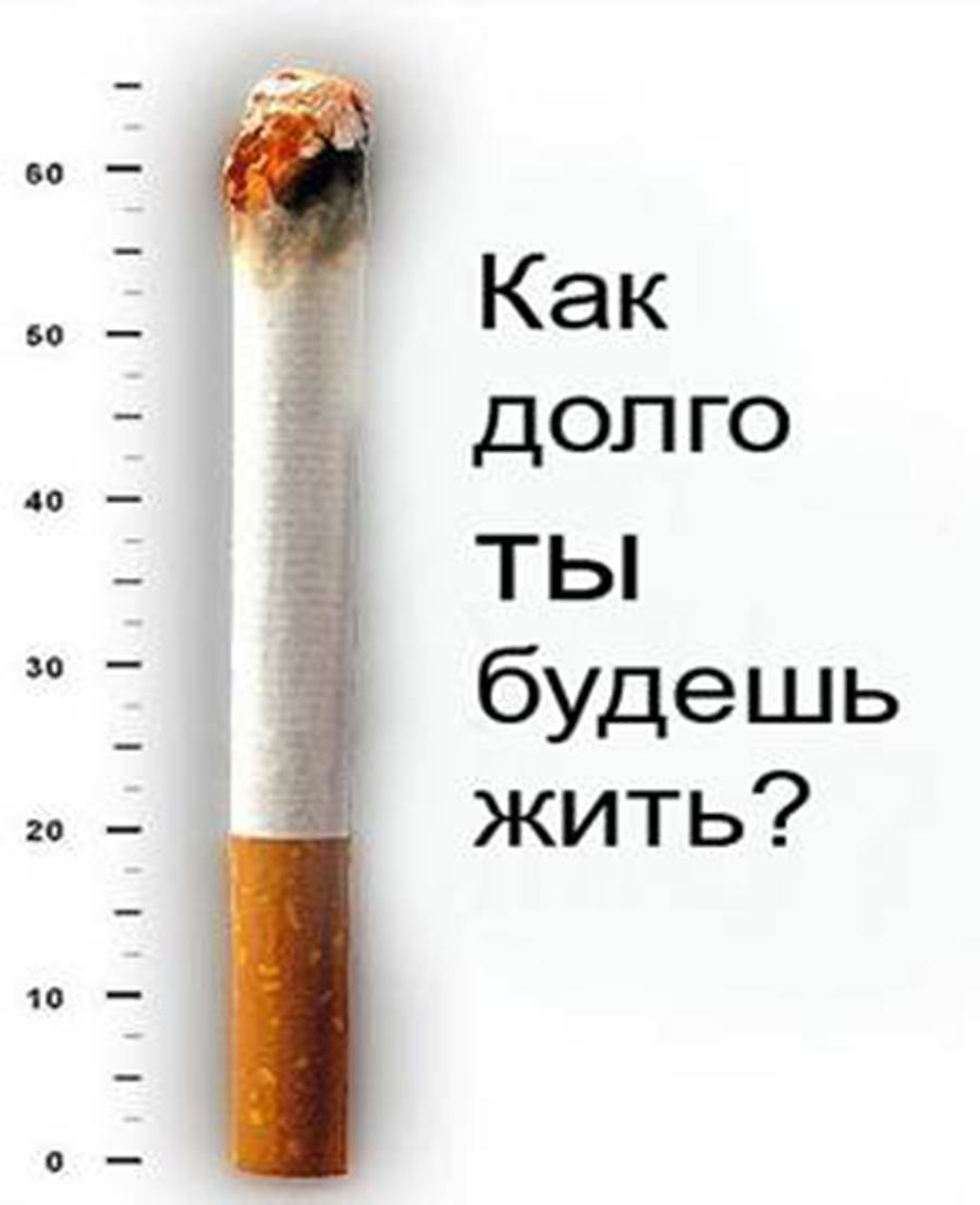 Что стоит знать о курении
